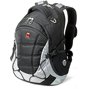 SwissGear SA9769 Computer Backpack (Black/Light Gray)