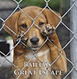 Baileys Great Escape (A Cute Dog Story)