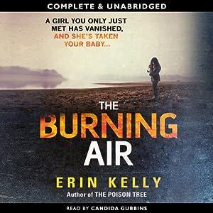 The Burning Air   [Erin Kelly]