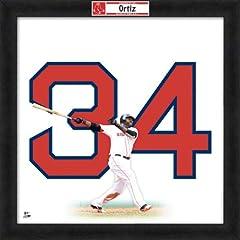 David Ortiz Boston Red Sox 20X20 Uniframe Photo by Photo File