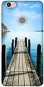 The Racoon Grip Sea hard plastic printed back case / cover for Letv Le 1s