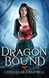img - for Dragonbound book / textbook / text book