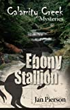 img - for Ebony Stallion: Calamity Creek Mysteries 6 book / textbook / text book