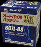 駆(kakeru) BG16AL-A2 高性能ゲル