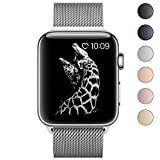 BRG Fully Magnetic Clasp Mesh Loop Milanese Stainless Steel Metal iWatch Band for Apple Watch Series 3 Series 2 Series 1 Sport and Edition 38mm, Silver