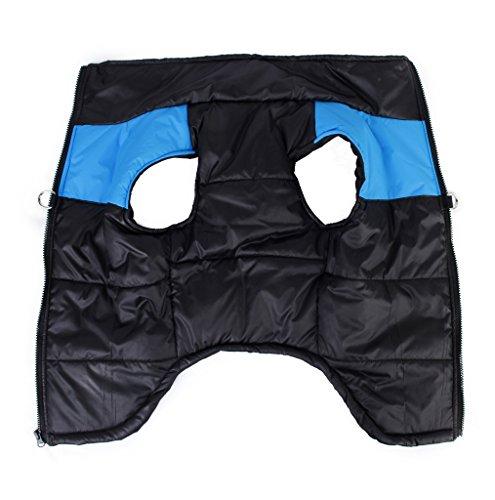 Bild von: D-Ring Design Wasserdicht Windbreaker Winter Warm Jacke Weste für Kleiner Hund schwarz mit BlauXS