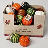 Set of (12) Fall Harvest Artificial Pumpkins (3.5 Inch) in Assorted Colors (12)