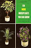 img - for 128 More Houseplants You Can Grow book / textbook / text book