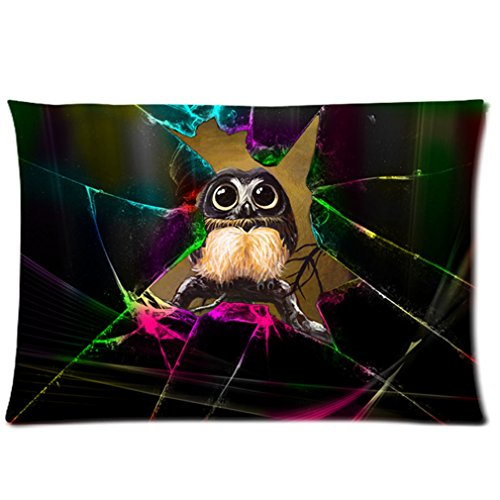 Cool Personalized Sparkle Cracks Cute Owl Custom Zippered Pillow Cases 16X24 (Two Sides) front-842173