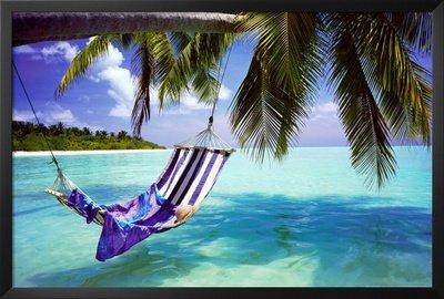 Professionally Framed Tropical Beach (Hammock Under Tree) Art Poster Print - 24X36 With Richandframous Black Wood Frame