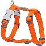 Red Dingo Plain Orange Dog Harness 20mm x (Neck: 36-59cm / Body 45-66cm)