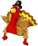Forum Novelties Men's Novelty Turkey Hat, Multi, One Size