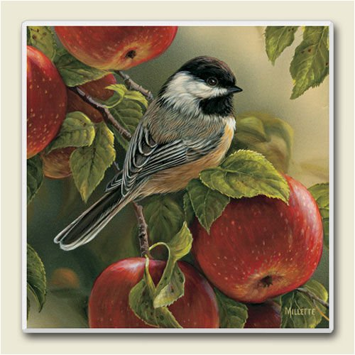 AbsorbaStone Coaster set~ Chickadee w/Apples ~4 Tile Drink Coasters ~ code 455C