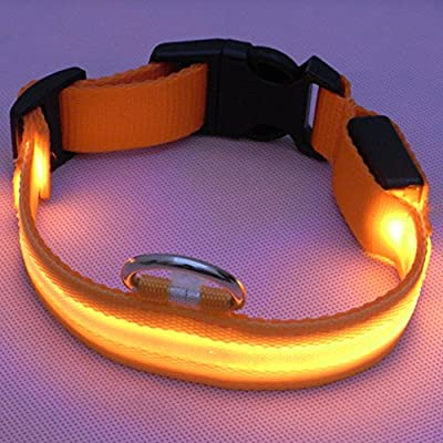 Sijueam Led Pet Dog Collar, USB Rechargeable Night Safety Flashing Collar Light-up Dog Necklace Loop Puppy Illuminating Collar with Adjustable Buckle