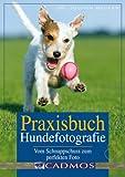 Praxisbuch Hundefotografie: Vom Schnappschuss zum perfekten Foto