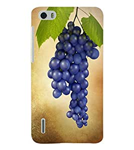 ColourCraft BlueBerry Back Case Cover for HUAWEI HONOR 6