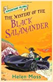 img - for The Mystery of the Black Salamander (Adventure Island) book / textbook / text book