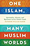 img - for One Islam, Many Muslim Worlds: Spirituality, Identity, and Resistance across Islamic Lands (Religion and Global Politics) book / textbook / text book