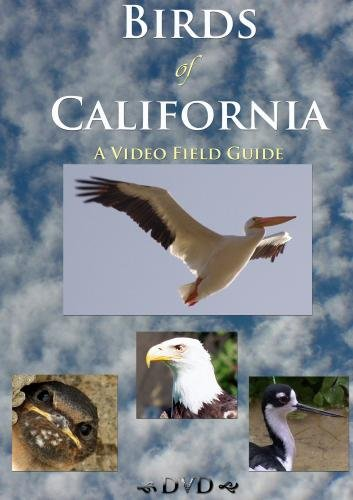 Birds of California:  A Video Field Guide
