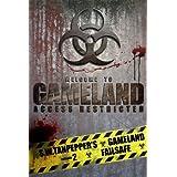 Failsafe (Book 2) (S. W. Tanpepper's GAMELAND) ~ Saul Tanpepper