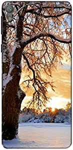 The Racoon Lean Snowy Tree hard plastic printed back case/cover for Sony Xperia E5