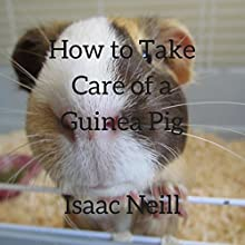 How to Take Care of a Guinea Pig Audiobook by Isaac Neill Narrated by Jeff Werden