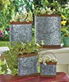 Set of 4 Rustic Country Steel Metal Flower Pot Planter Pocket Plant Container
