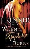 When Temptation Burns: A Shadow Keepers Novel