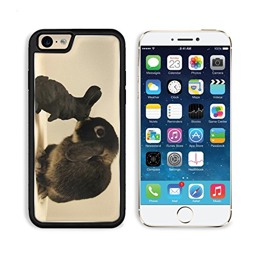 Rabbit White Black Brindle Baby Animal Apple Iphone 6 Tpu Snap Cover Premium Aluminium Design Back Plate Case Customized Made To Order Support Ready Liil Iphone_6 Professional Case Touch Accessories Graphic Covers Designed Model Sleeve Hd Template Wallpap front-950045