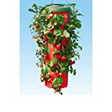 Strawberry Planter Topsy Turvy Upside Down Home Garden Hanging Vegetables On Tv