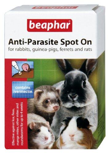 beaphar-pipetas-spot-on-antiparasitos-para-conejos