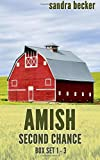 img - for Amish Second Chance book / textbook / text book