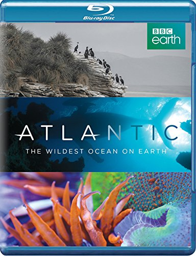 atlantic-the-wildest-ocean-on-earth-reino-unido-blu-ray