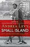 Andrea Levy Small Island