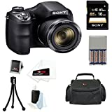 Sony H300 DSCH300B DSC-H300/B High zoom digital camera Black + Sony 16GB Class 10 SDHC Memory Card + Carrying Case + AA Rechargeable Batteries & Charger + Accessory Kit
