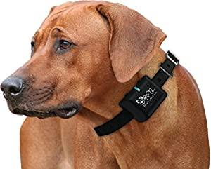 Ortz® Rechargeable Bark Collar [FREE CHARGER] Waterproof Dog Control Shock Collar for Small, Medium & Large Dogs - Best Electric Vibration Anti NO Bark Training [Black] from Ortz