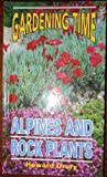 img - for Alpines and Rock Plants (Gardening Time S) book / textbook / text book