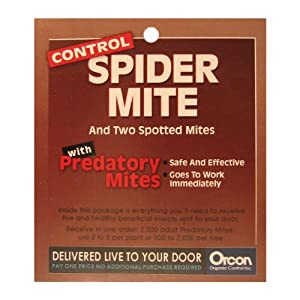 Orcon MI-C2000 Live Adult Predatory Mites, 2,000 Count