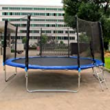 Trampoline With Safety Enclosure Net & Ladder 6FT 8FT 10FT 12FT 14FT Quality Premium Outdoor Kids play gymnastics (14ft)