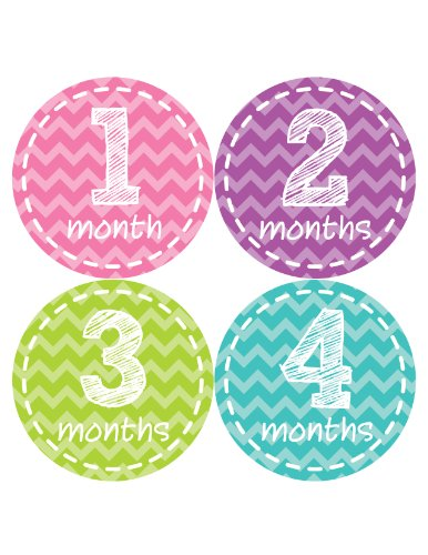 Months in Motion 250 Monthly Baby Stickers Baby Girl Milestone Sticker