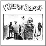 Songtexte von Wildest Dreams - Wildest Dreams