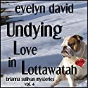 Undying Love in Lottawatah: Brianna Sullivan Mysteries Audiobook by Evelyn David Narrated by Wendy Tremont King
