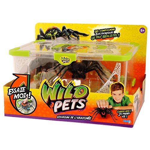 wild-pets-kk29002-terrarium-araignee-exclusive