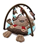 Little Bird Told Me Percy Pup Activity Play Gym