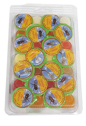 namiba-terra-70219-vorteilspack-28-stuck-jungle-shop-beetle-insect-jelly-mix-fur-insekten-und-kafer-
