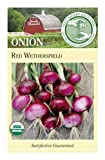 Search : Seed Savers Exchange 0395 Organic, Open-pollinated Onion Seed, Red Wethersfield, 100 Seed Packet