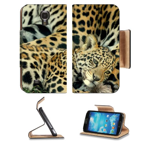 Animal Jaguar Baby Pattern Wildlife Sleeping Mother Spots Samsung Galaxy S4 Flip Cover Case With Card Holder Customized Made To Order Support Ready Premium Deluxe Pu Leather 5 Inch (140Mm) X 3 1/4 Inch (80Mm) X 9/16 Inch (14Mm) Luxlady S Iv S 4 Profession front-1058183