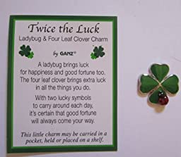 1 Ganz Twice the Luck Clover and Lady Bug Charm by Ganz