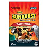 Higgins Sunburst True Fruits Gourmet Treats for Conures, Parrots & Macaws, 5 oz