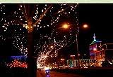 電気代節約!! ソーラー LED 100灯 10m 選べる5色!! クリスマス イルミネーション (レッド)